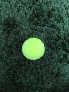 テニスボール 2個積み 上から