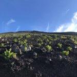 富士山への道 7歩目 「2日目(登り)」編