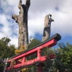 2019年の初詣 都島神社⇒松尾大社